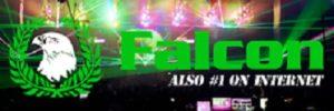 Falcon Radio Live Online